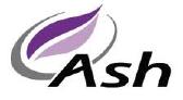 ASH TECHNOLOGIES