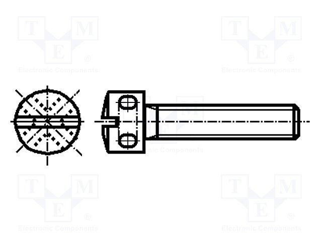 M3X12/BN408 DIN404