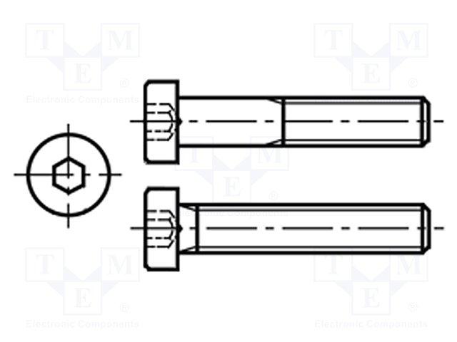 M3X12/BN17 DIN7984