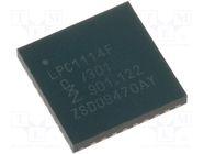 LPC1114FHN33/301