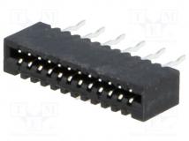 DS1020-04-12BVT1