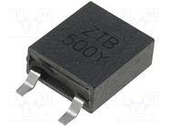 ZTB500Y