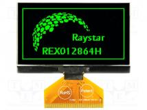 REX012864HGPP3N00000