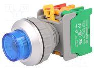 LXL30-1O/C BL, W/O LAMP