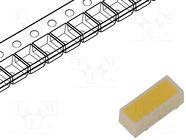 CLL620-0101B2-50AM1C5
