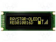 REG010016DYPP5N00000