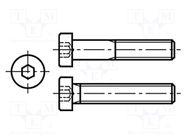 M4X16/BN2844 DIN7984