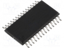 MSP430G2313IPW28R
