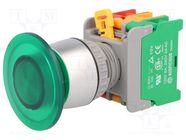 EBL22-1O/C G, W/O LAMP