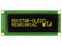 REG010016CYPP5N00000